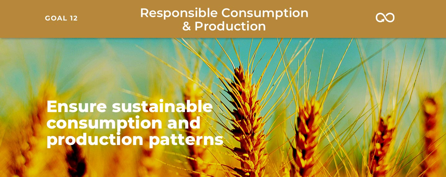 SDG12 – Responsible Consumption & Production