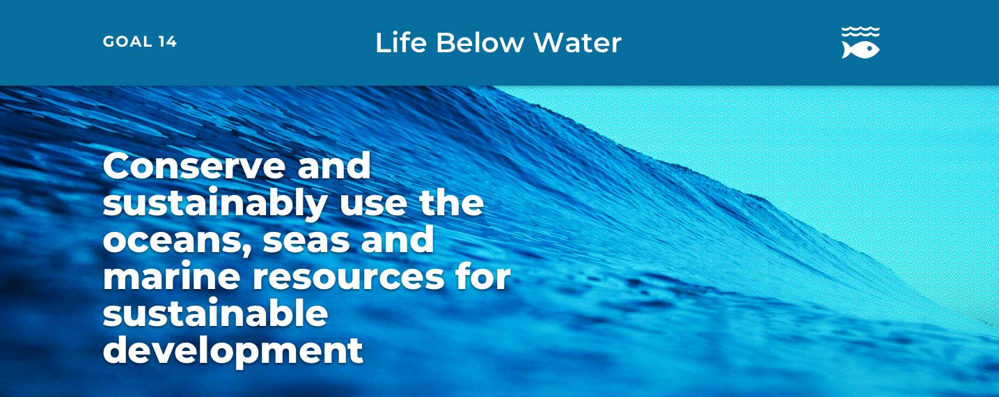 SDG14 – Life Below Water